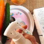 除菌スプレーはキッチンで使えるのがおすすめ!【赤ちゃん、子供にも安心安全】【蚊やゴキブリ退治にも】