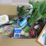 【オイシックス期間限定おためしセット再開】新型コロナウイルスの影響で野菜の宅配が殺到している